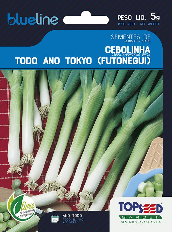 CEBOLINHA TODO ANO TOKYO(FUTONEGUI)