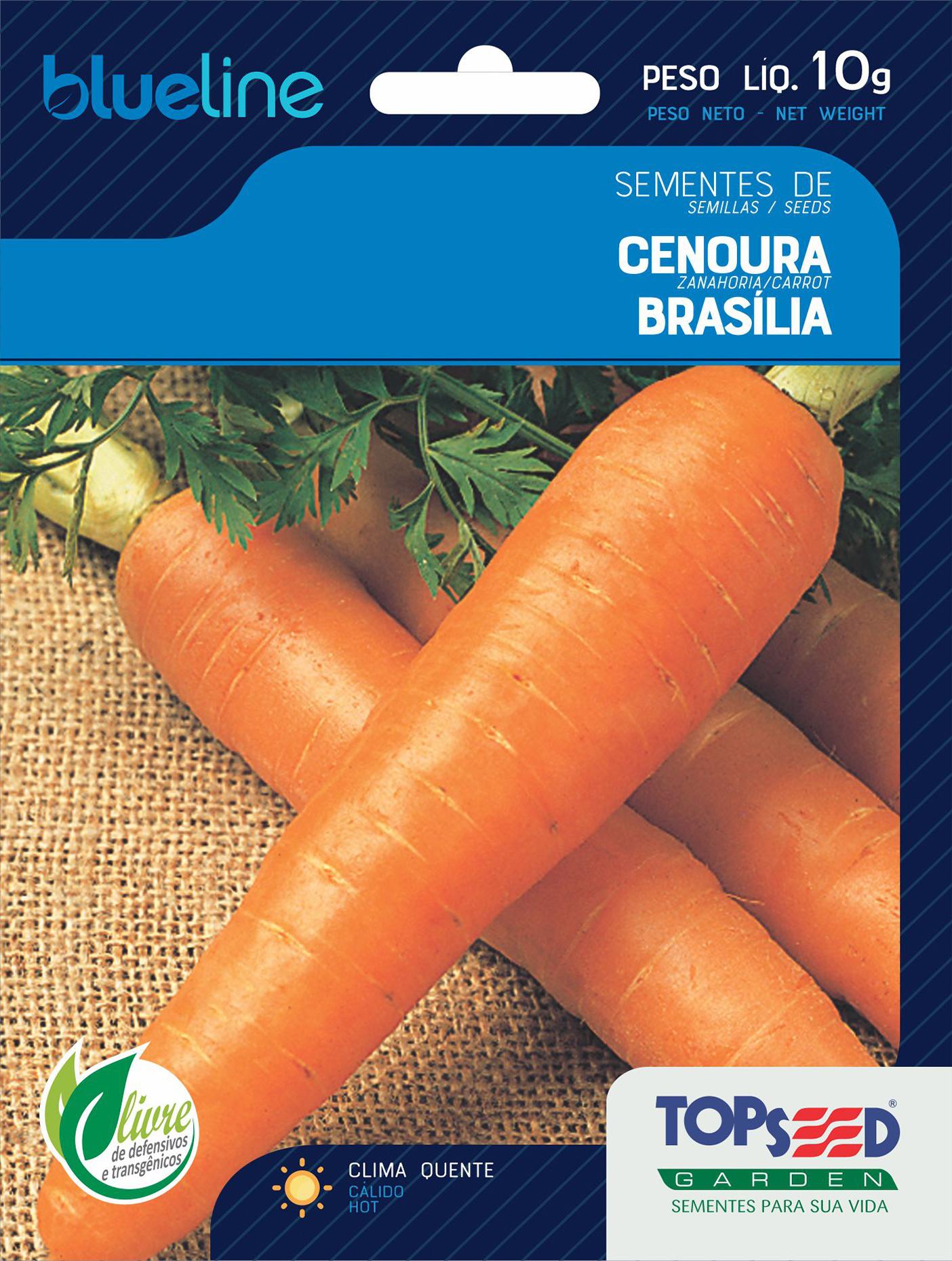CENOURA BRASÍLIA ALTA SELEÇÃO