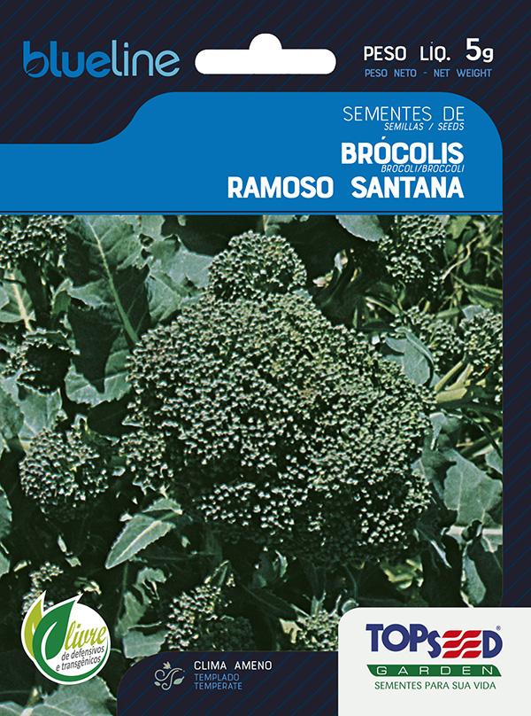 BRÓCOLIS RAMOSO SANTANA