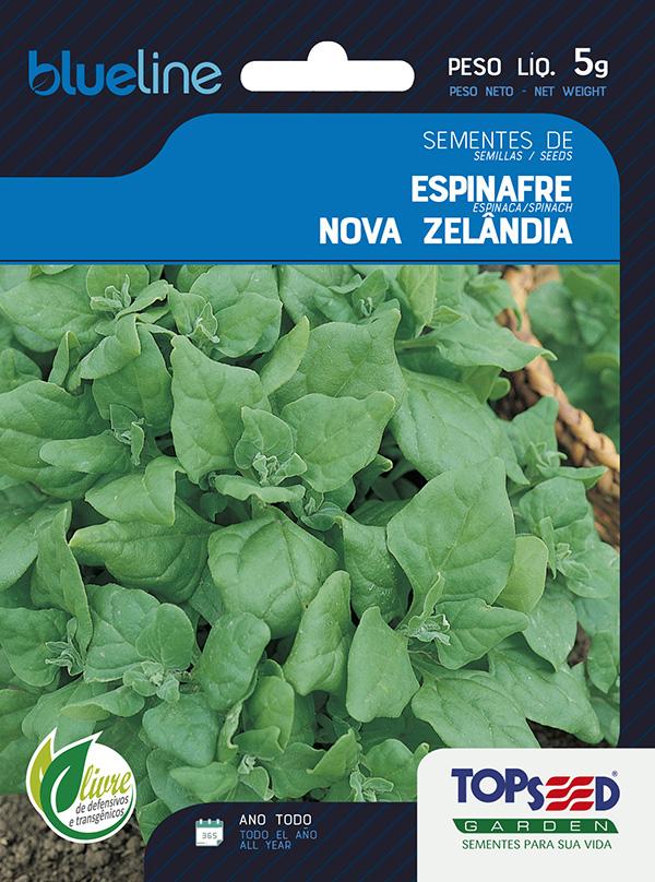 ESPINAFRE NOVA ZELÂNDIA