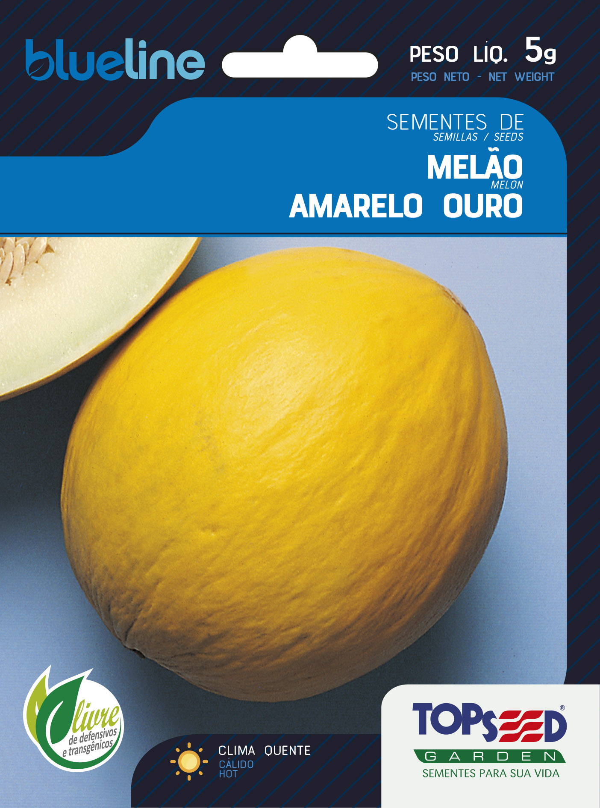 MELÃO AMARELO OURO