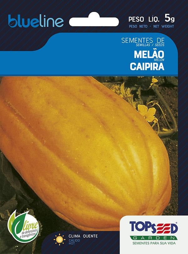MELÃO CAIPIRA