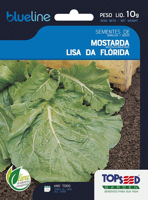 MOSTARDA LISA DA FLÓRIDA