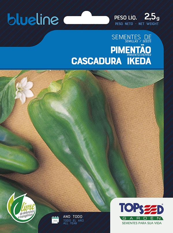 PIMENTÃO CASCADURA IKEDA