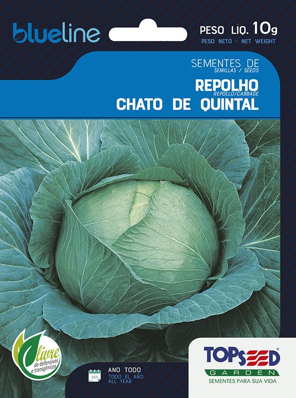 REPOLHO CHATO DE QUINTAL