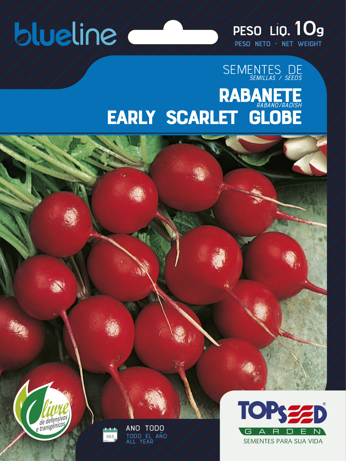 RABANETE EARLY SCARLET GLOBE