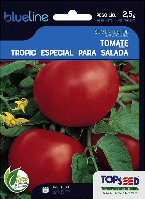 TOMATE ESP P/ SALADA (MEIA ESTACA)
