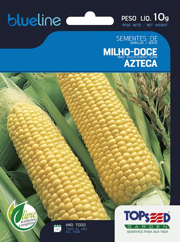 MILHO-DOCE AZTECA
