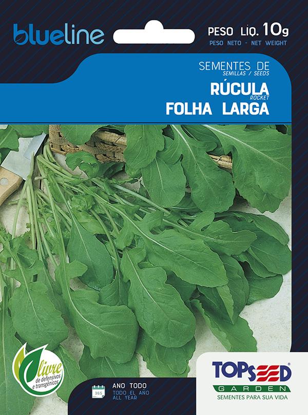 RÚCULA FOLHA LARGA