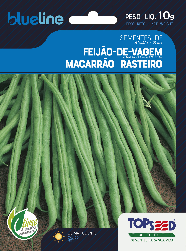 FEIJÃO-DE-VAGEM MACARRÃO RASTEIRO