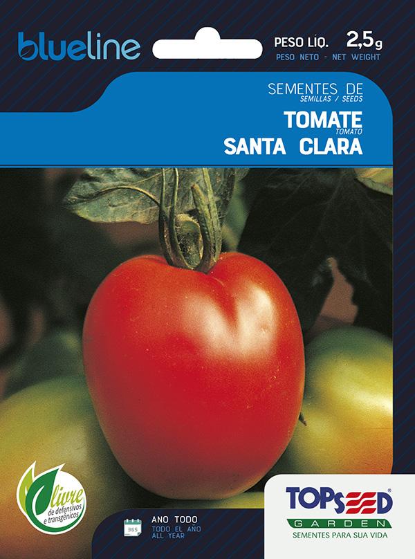 TOMATE SANTA CLARA