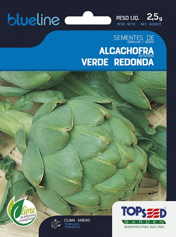ALCACHOFRA VERDE REDONDA