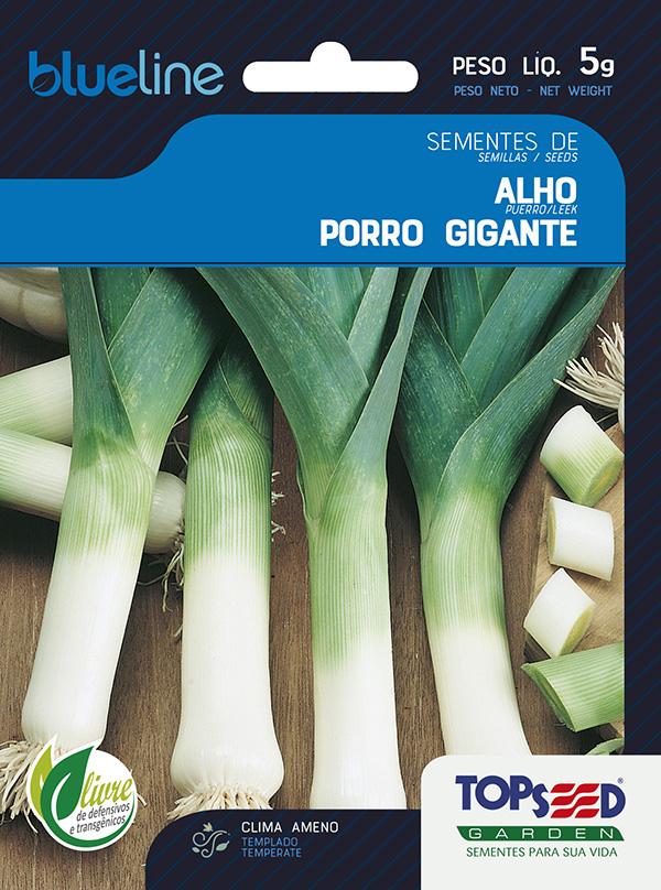 ALHO-PORRO GIGANTE