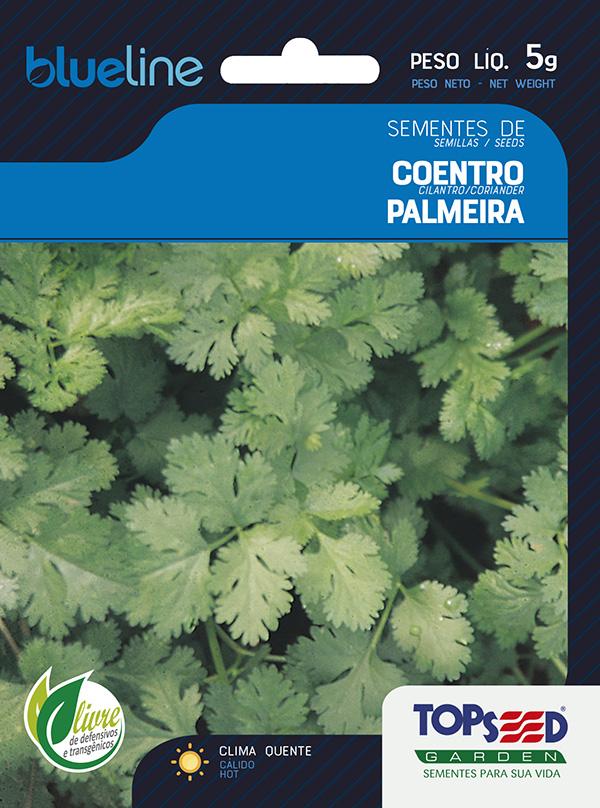 COENTRO PALMEIRA