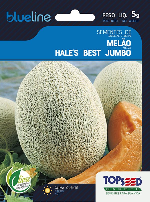 MELÃO HALE'S BEST JUMBO