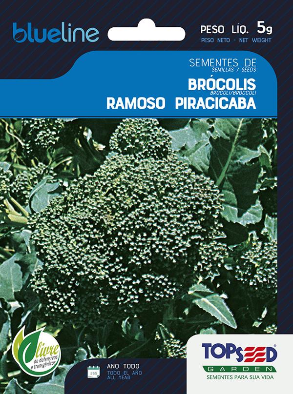 BRÓCOLIS PIRACICABA
