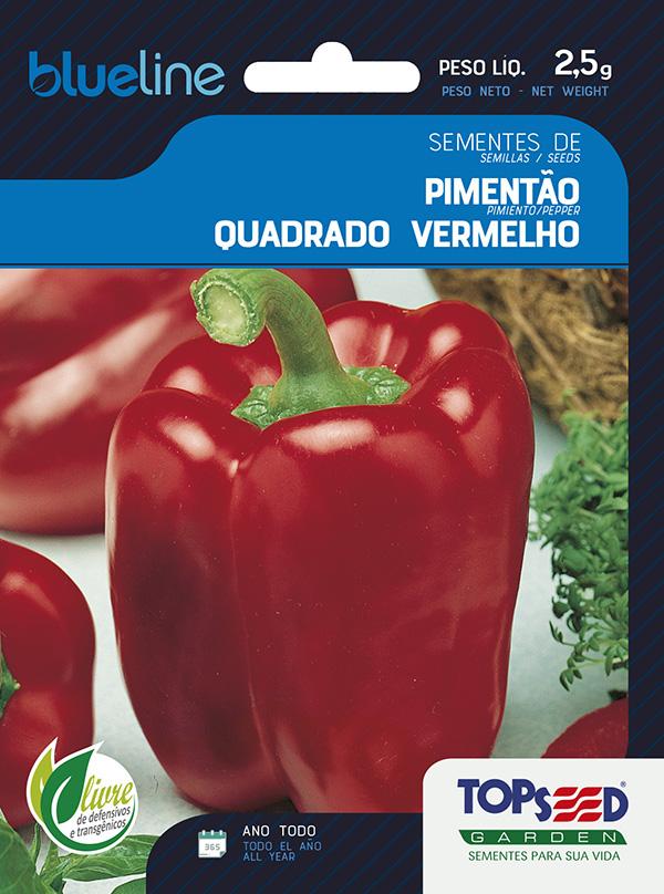 PIMENTÃO QUADRADO VERMELHO