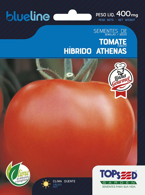 TOMATE HIB. ATHENAS F1